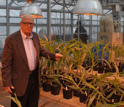 Donald Penner has been researching high fructose corn syrup-based adjuvants hor herbicides since 1980.