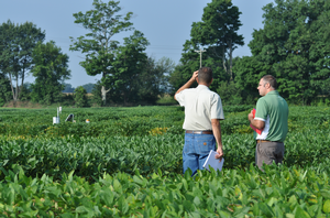 Farmers standing in a field talking