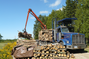 Delivery of hardwood to be processed into firewood.