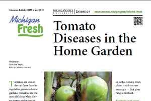 Michigan Fresh: Tomato Diseases in the Home Garden (E3170) - MSU