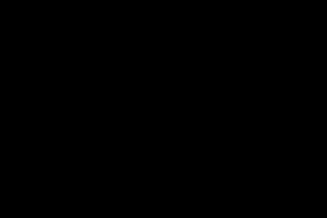 Multicolored carrot sticks and green broccoli florets in a school cafeteria salad bar.
