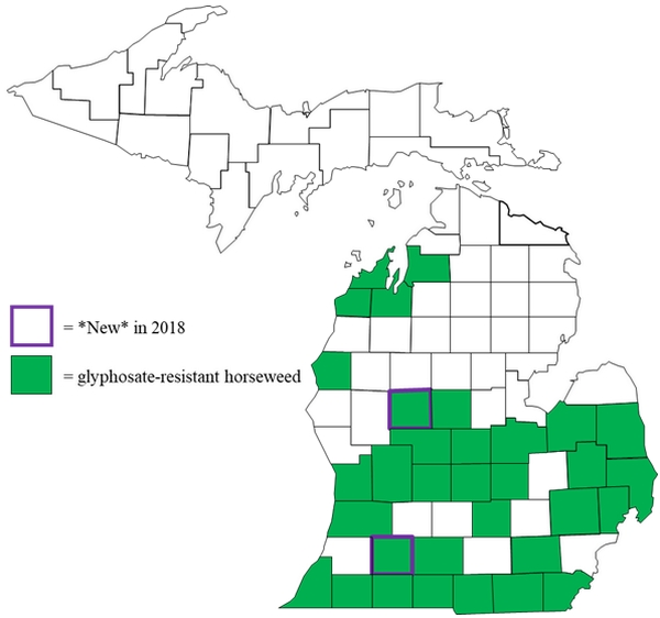Figure 1. Distribution of glyphosate-resistant horseweed in Michigan by county.