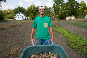 Young man pushing a wheelbarrow on an urban farm.