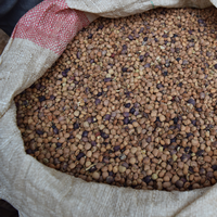 Photo of sack of dry beans