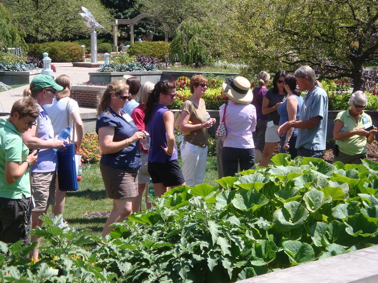 Wander through the gardens at the MSU Plant Trial Field Day.
