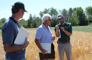 Discussing field crops.