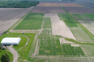 Michigan Wheat Program Field Day set for June 12 in Lansing