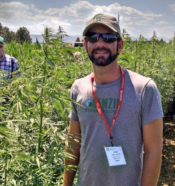 Industrial hemp on ballot with marijuana in November - Field Crops