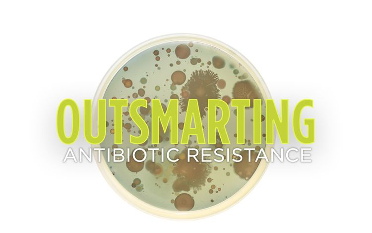 Outsmarting antibiotic resistance