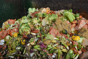 Reducing food waste begins with small steps