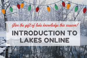 Give the gift of knowledge this holiday season with MSU Extension's Introduction to Lakes Online course