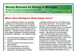 Woody Biomass for Energy in Michigan: Where Does Michigan's Wood Supply Grow? (E3088)