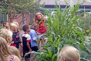 Woodland childcare students and Advanced Extension Master Gardener Elizabeth Slajus observe the corn they planted. Photo credit: Rebecca Krans, MSU Extension