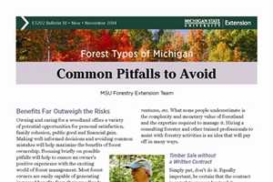 Forest Types of Michigan: Common Pitfalls to Avoid (E3202-18