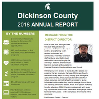 Cover of the Dickinson County Annual Report 2018-19.