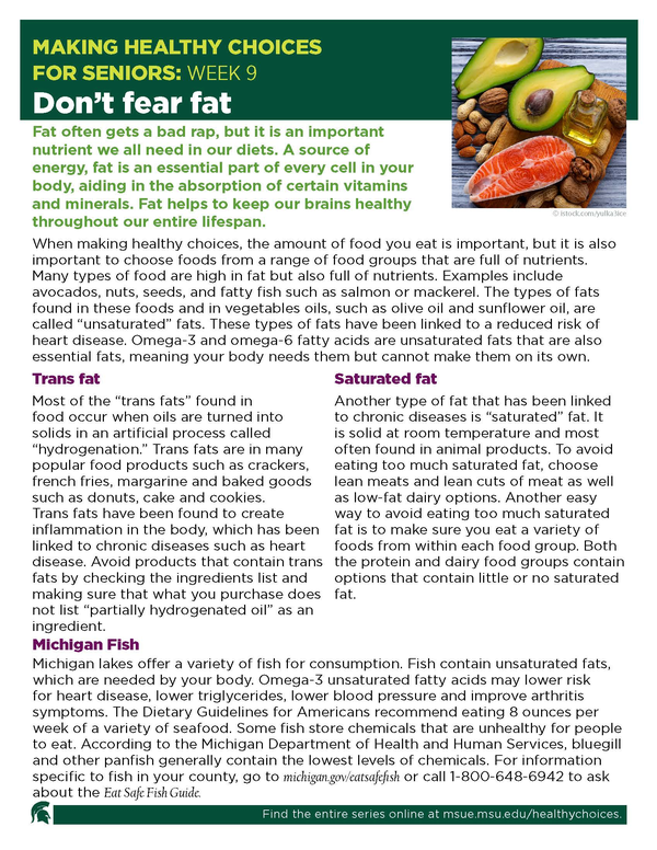 Thumbnail image of Making Healthy Choices for Seniors Newsletter Week 9: Don't Fear Fat