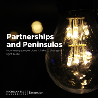 Partnerships and Peninsulas title over a light bulb image.