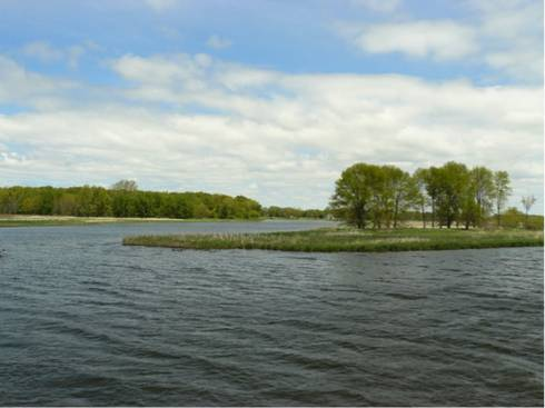 how healthy is michigan s longest river msu extension