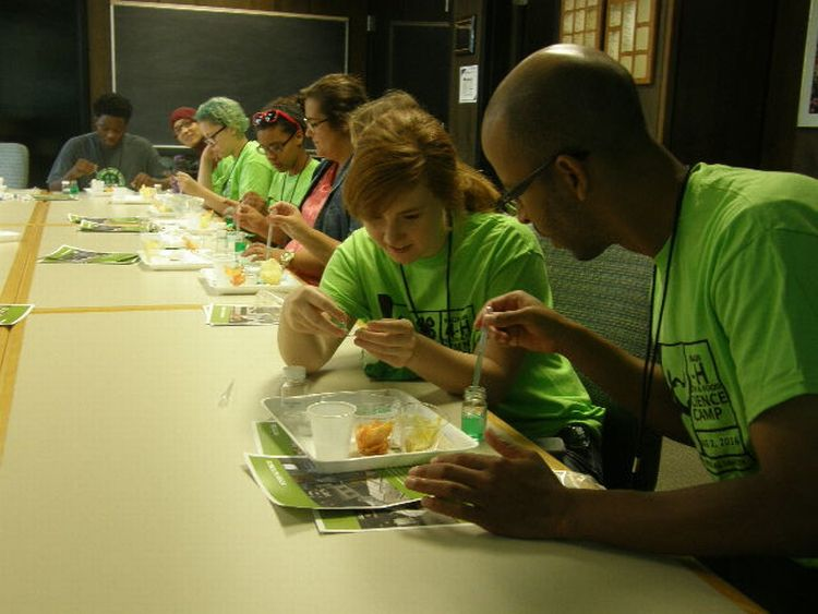 Youth at 4-H Health and Food Science Camp explore the texture of food.