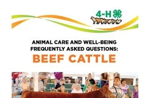4-H Animal Care & Well-Being Bookmarks - Beef Cattle 4H1707