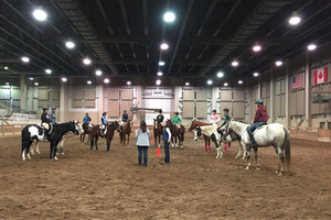 40th Annual 4-H Horse Benefit Clinic weekend was a success