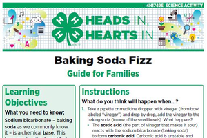 Baking Soda Fizz cover page.