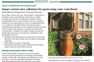 Smart Gardening for Shorelands: Smart Stormwater Solutions for Protecting Your Waterfront