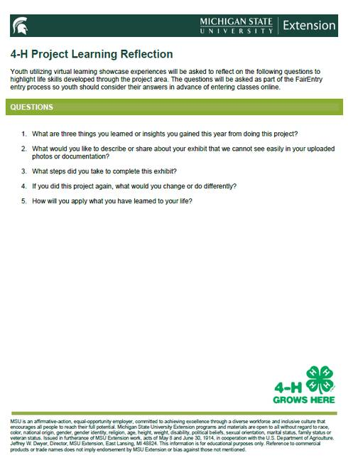 Snapshot of 4-H Project Leaning Reflection document.