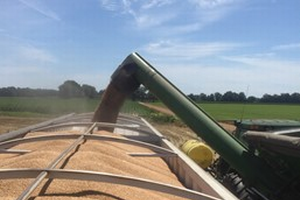 Wheat webinar series features Facebook live option