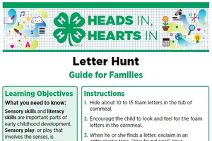 Letter Hunt cover page.