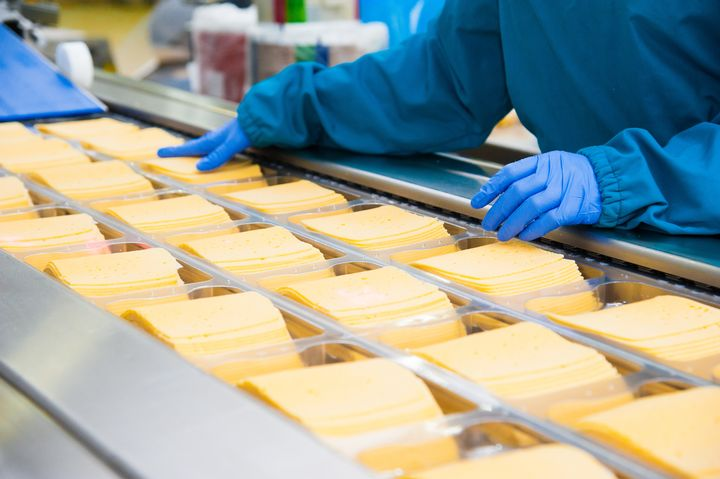 Cheese slices on conveyor belt with gloved hands of worker in view.