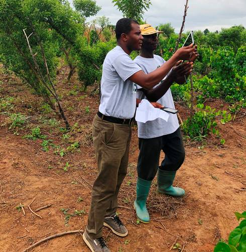 Eric Owusu Danquah (left) conducts field study with a local farmer.