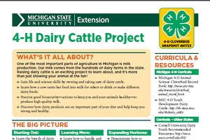 Michigan 4-H Cloverbud Snapshot Sheet: 4-H Dairy Cattle Project (4H1723)