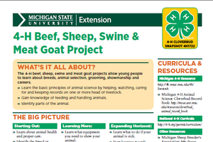 Michigan 4-H Cloverbud Snapshot Sheet: 4-H Beef, Sheep, Swine & Meat Goat Project (4H1722)