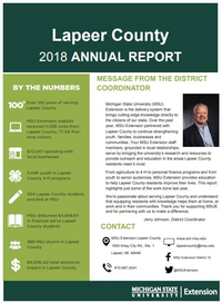 Cover of the Lapeer County Annual Report 2018-19.