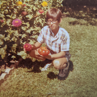 Photo of David Douches, aged 12,  kneeling next to his flower garden with tomato in hand from 1972
