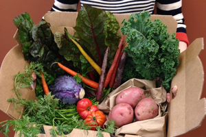 Donate excess produce from your garden to food banks and food pantries