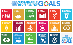 United Nations 2015 Sustainable Development Goals