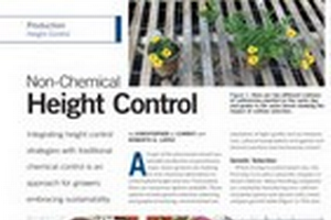 Non-Chemical Height Control