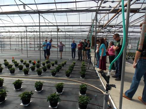 A team observing a greenhouse operation