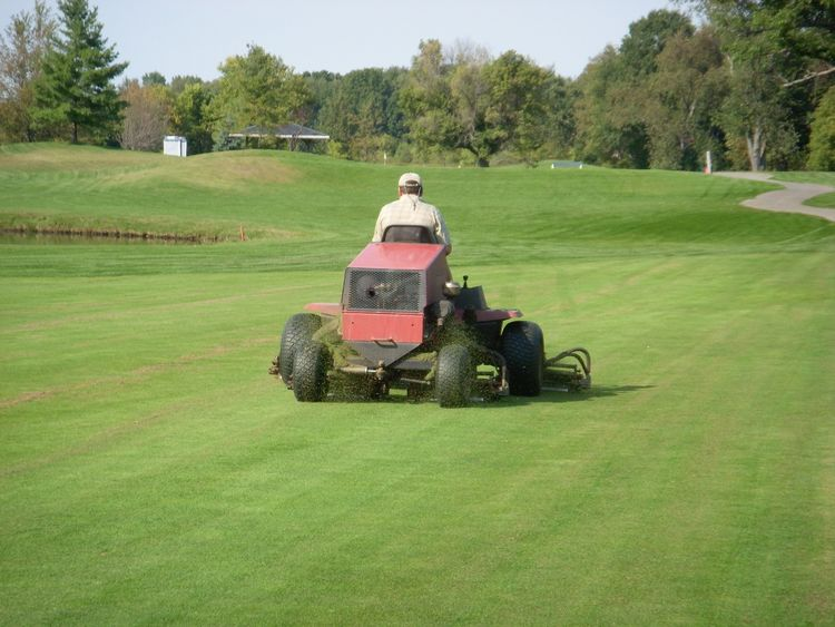 Mowing fairway