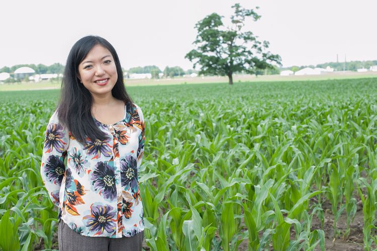 Felicia Wu, John A. Hannah Distinguished Professor in Food Safety