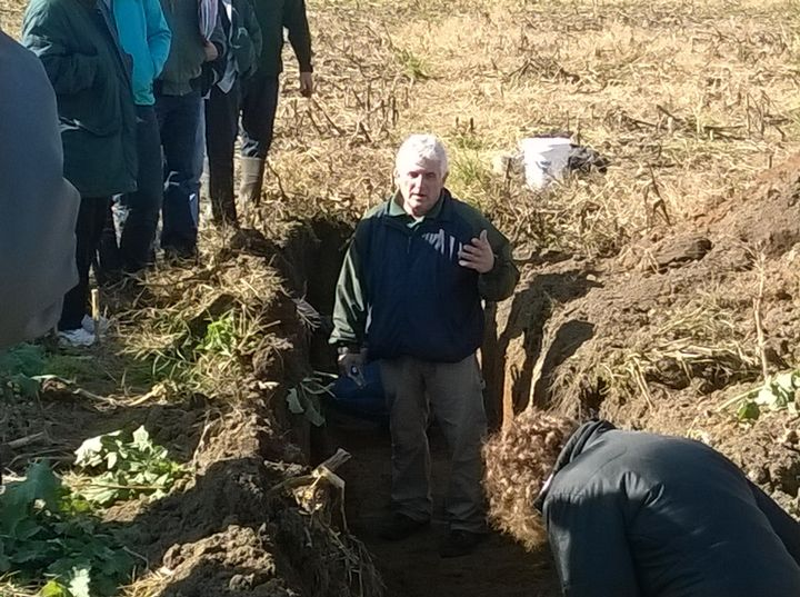 MSU Extension educator Paul Gross talks about healthy soil in a root pit at a recent event.