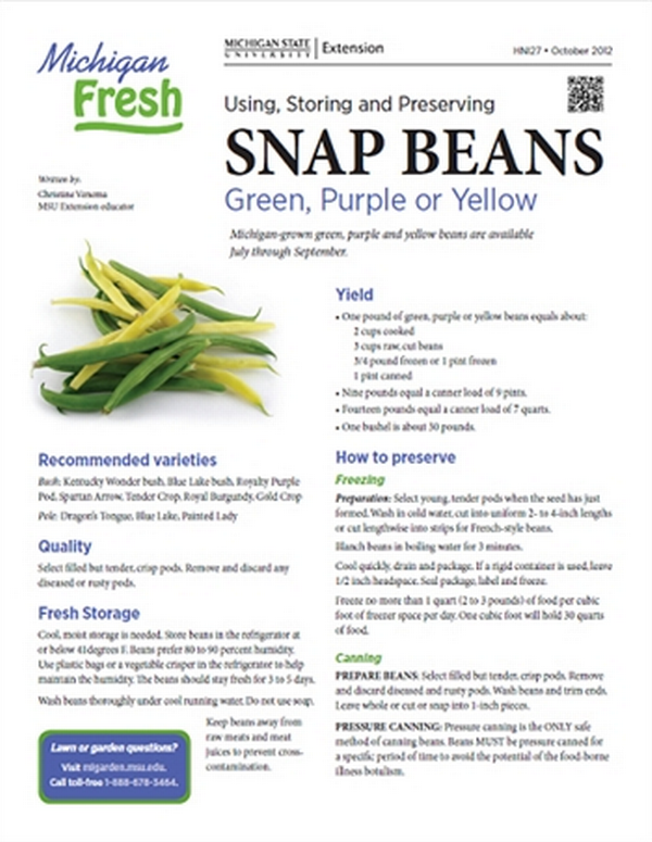 Michigan Fresh: Using, Storing, and Preserving Snap Beans