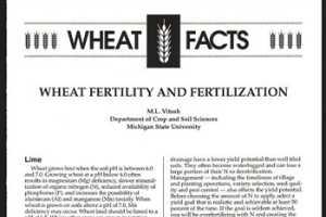 Wheat Fertility and Fertilization (E2526) - MSU Extension