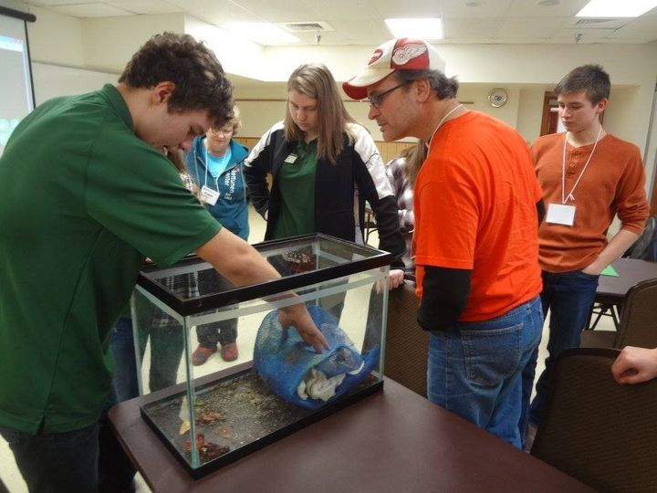 Youth and adults working together to learn about insects