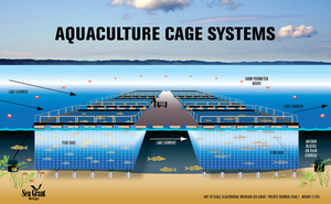 Great Lakes net-pen aquaculture -- real and perceived risks to the environment