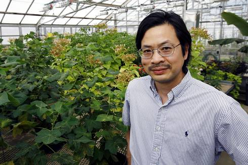Sheng-Yang He was selected to join the National Academy of Sciences for his work on infectious disease susceptibility in plants.