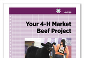 Your 4-H Market Beef Project (4H1188)