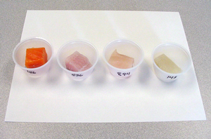 Popular fish samples used by the MSU Dept of Food Science and Human Nutrition Sensory Evaluation Lab during research on fish preference.